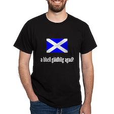 a bheil gàidhlig agad? T-Shirt