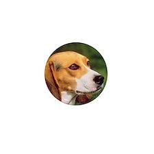 Cute Beagle Mini Button