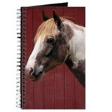 Paint Pony Journal