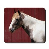Paint Pony Mousepad