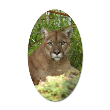 Cougar 016 35x21 Oval Wall Decal