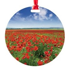 2-red poppies Ornament