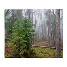 Mist in pine forest Throw Blanket