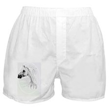 Leopard Appy and White Feathers-oval  Boxer Shorts