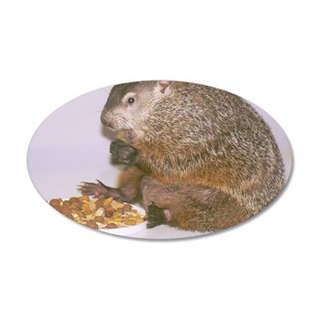 Groundhog 35x21 Oval Wall Decal