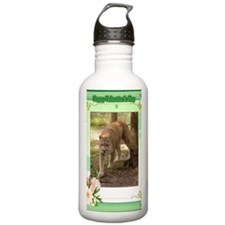 val-cougar-00090-45x65 Water Bottle