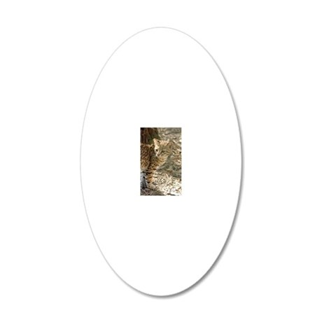 geoffroy-cat-013 20x12 Oval Wall Decal