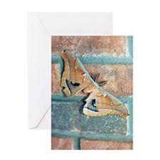 Butterfly Note Card on Brick Wall Greeting Card
