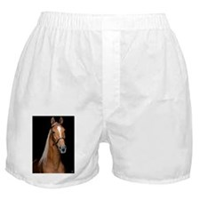 sorrel_lgframed Boxer Shorts