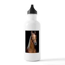 sorrel_lgframed Water Bottle