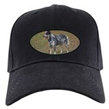 ACD Baseball Cap