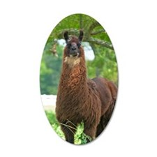 blk_llama_card Wall Decal