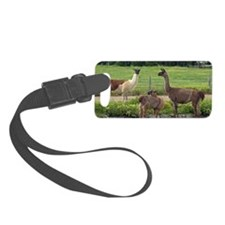 llamatrio2_sticker Luggage Tag