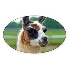llama2_btn Decal