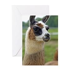 llama2_iphone3G Greeting Card