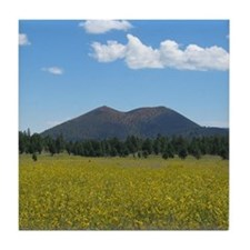 Sunset Crater Volcano NM Tile Coaster