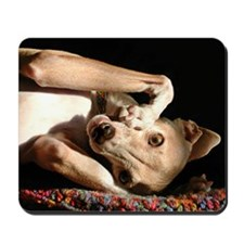 Italian Greyhound Smunch Mousepad