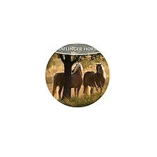 cp_hafi_cover Mini Button