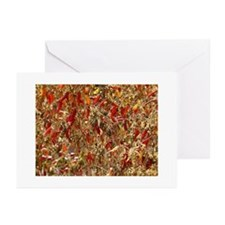 Chilli Pepper Greeting Cards (Pk of 10)
