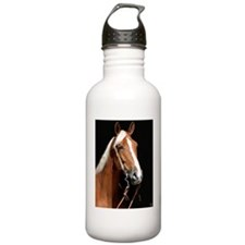 chestnut_panel Water Bottle