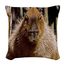 (12) Capybara Staring Woven Throw Pillow