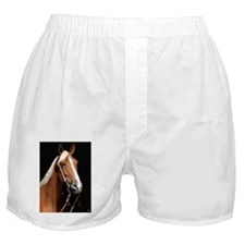 chestnut_lgframed Boxer Shorts