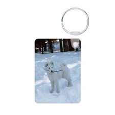 Samoyed in snow Keychains
