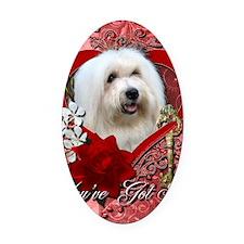 Valentine_Red_Rose_Coton_de_Tulear Oval Car Magnet