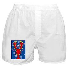 LobsterXmas-iPad Boxer Shorts