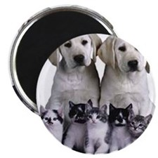 392080-love_puppies_kittens_around_or_ndash Magnet