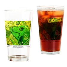 TOUR Lindsey Larson Drinking Glass