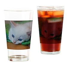 DSC_0546 Drinking Glass
