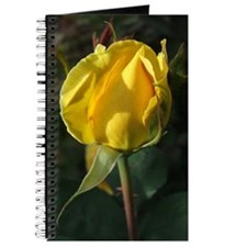 YellowRoseBud1LBottle Journal