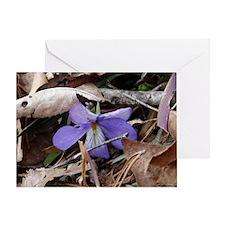 Wildflower Bird-Foot Violet Greeting Card