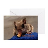 Carbs Flying Squirrel Greeting Cards (Pk of 10