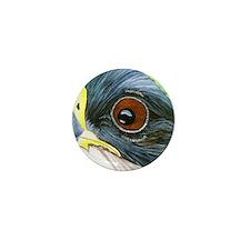 Peregrine Falcon Mini Button