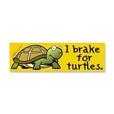 Cute Turtle Car Magnet 10 x 3