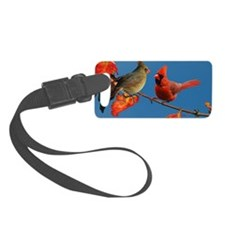 2-6x4_pcard Luggage Tag