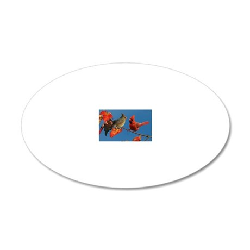 2-5x3oval_sticker 20x12 Oval Wall Decal