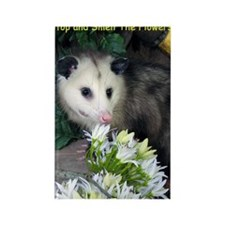 Possum Birthday Card - Flowers Rectangle Magnet