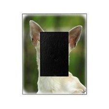 Chihuahua 9P93D-123 Picture Frame