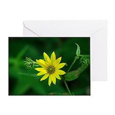 Woodland Sunflower Greeting Card