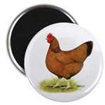 Red Hen Magnet