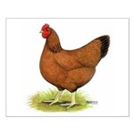 Red Hen Small Poster