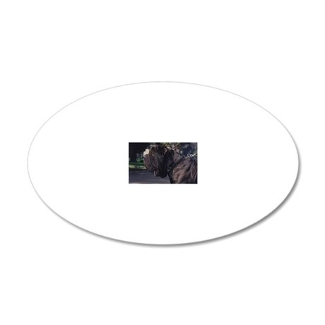 cal-8 20x12 Oval Wall Decal