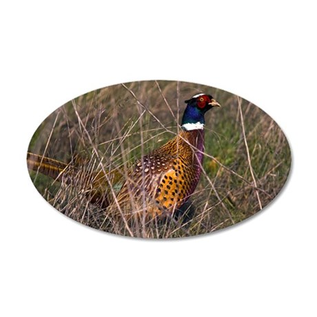 (3) Pheasant  407 35x21 Oval Wall Decal