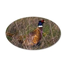 (3) Pheasant  407 Wall Decal