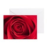 Blank greeting card Greeting Cards