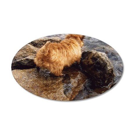 donnerlakedigging 35x21 Oval Wall Decal