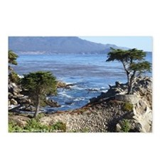 2300x1800TitledCypress Postcards (Package of 8)